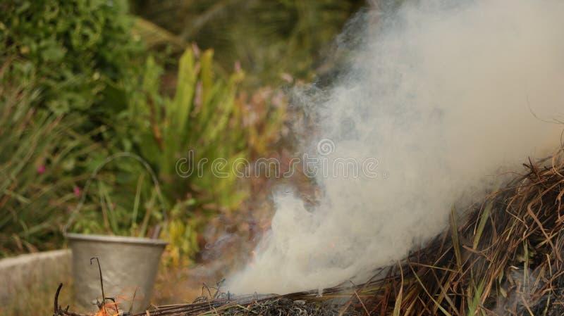 从被烧的秸杆的烟在有葡萄酒钢桶的庭院里 免版税库存照片