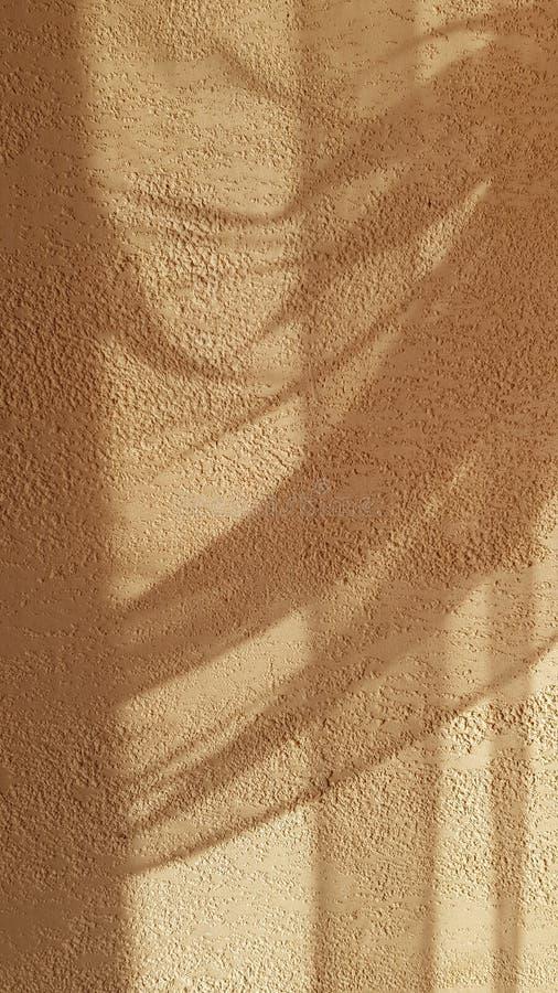 从被装饰的薄纱帷幕的透明阴影质感粗糙的膏药墙壁表面上 免版税库存图片