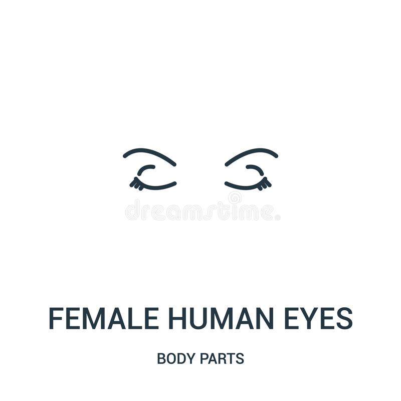 从身体局部汇集的女性肉眼象传染媒介 稀薄的线女性肉眼概述象传染媒介例证 皇族释放例证