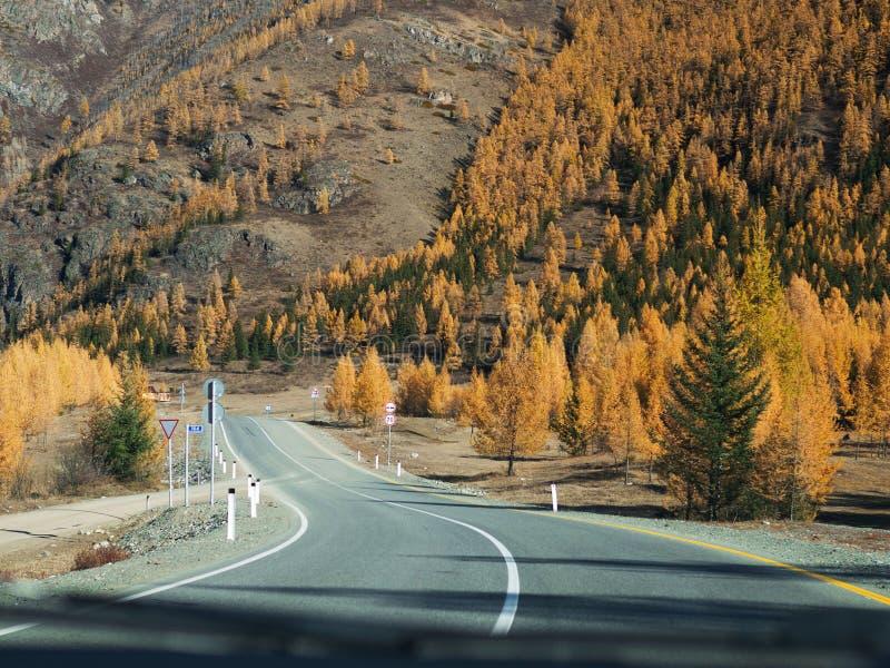 从车窗里边的看法对路和秋天山环境美化 在透视的柏油路 库存照片