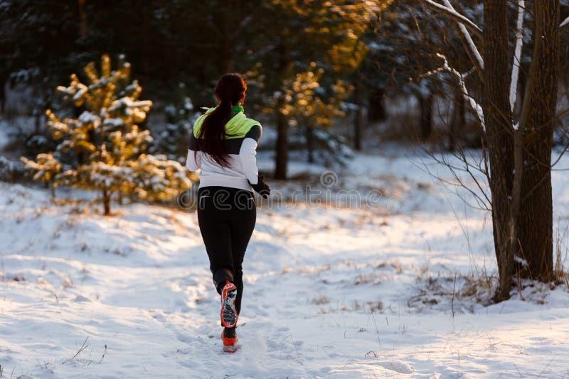 从运动员女孩后面的照片运动鞋的在早晨奔跑 免版税库存照片