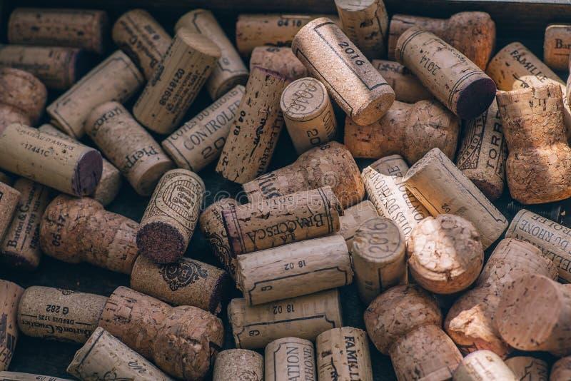 从酒,木黄柏背景的黄柏  免版税库存图片