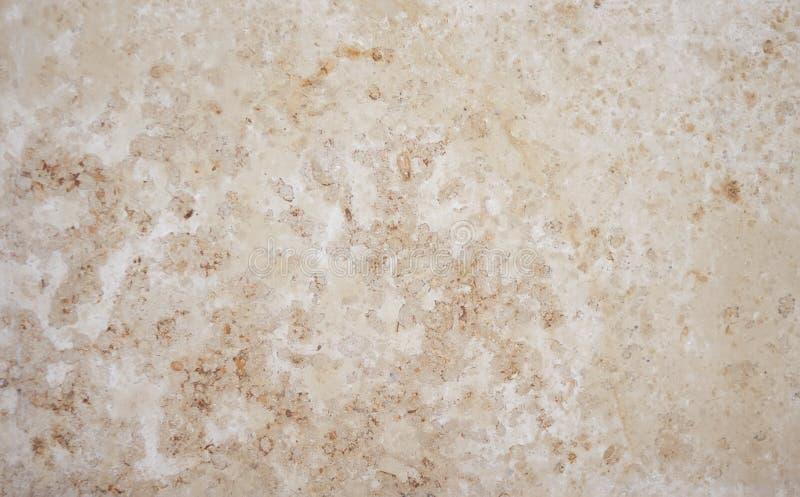 从钙质凝灰岩的抽象背景 免版税图库摄影
