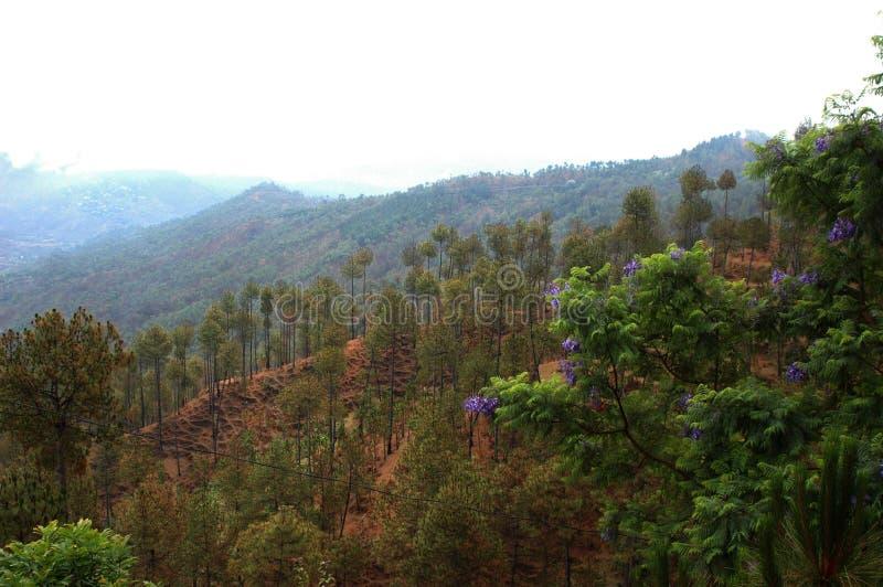从阿尔莫拉, Kumaun,印度的一个风景看法 库存照片