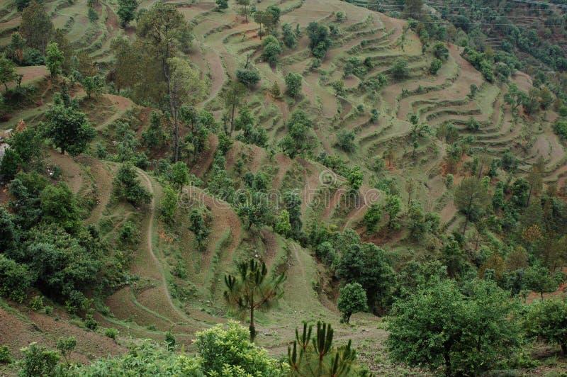 从阿尔莫拉, Kumaun,印度的一个风景看法 图库摄影