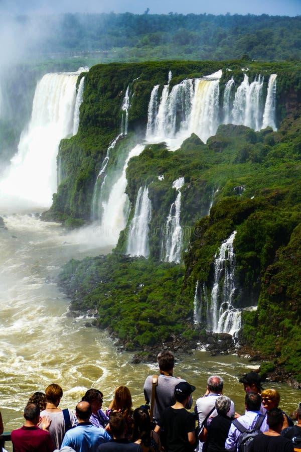 从阿根廷的伊瓜苏瀑布视图 免版税库存照片