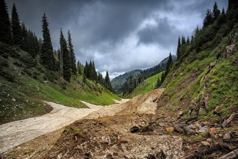 从雪崩的雪在峡谷 免版税库存照片