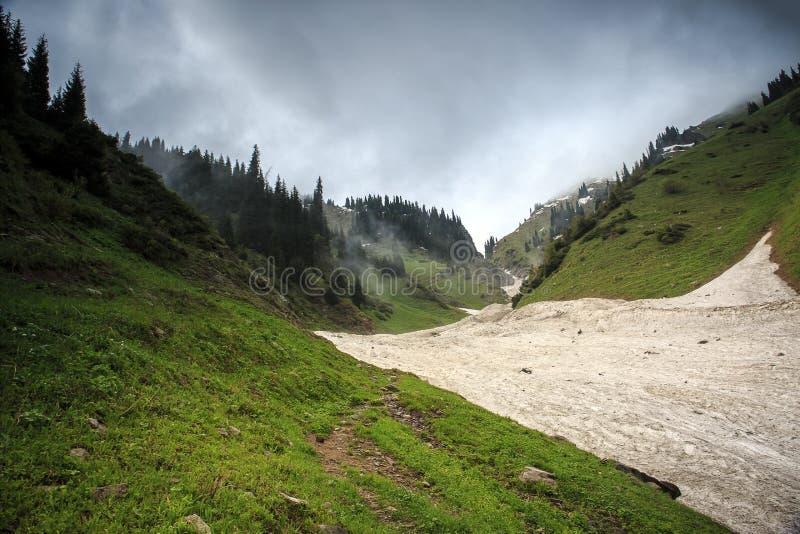 从雪崩的雪在峡谷 免版税图库摄影