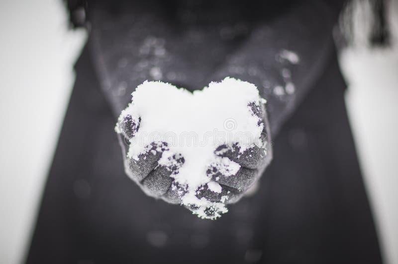 从雪的心脏在胳膊 免版税库存照片