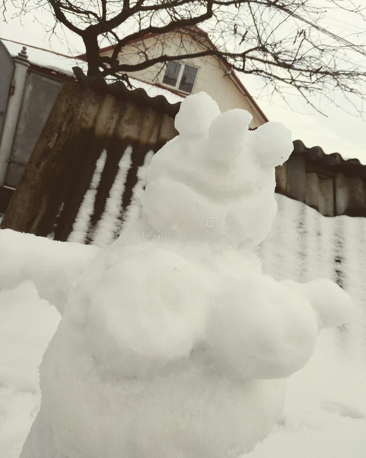 从雪的性感的妇女 免版税库存照片