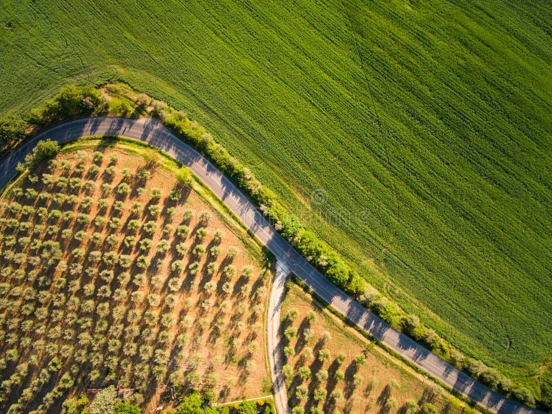 从顶视图航拍 托斯卡尼 意大利 库存照片