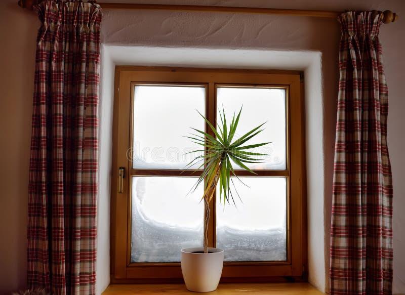 从高山瑞士山中的牧人小屋的窗口的舒适看法在一个多雪的冬日 从里面的看法 免版税库存图片