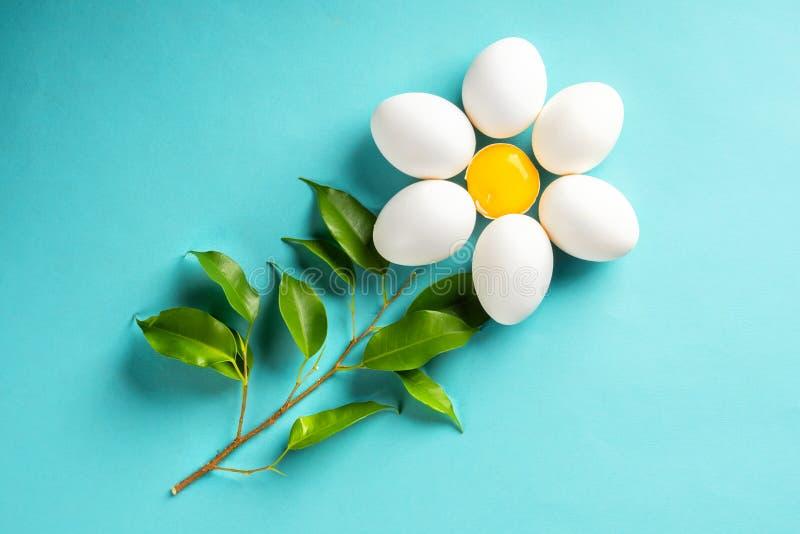 从鸡蛋的春黄菊雏菊和卵黄质离开复活节春天概念 免版税库存照片