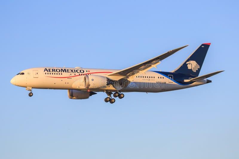 787从Aeromexico 免版税库存照片