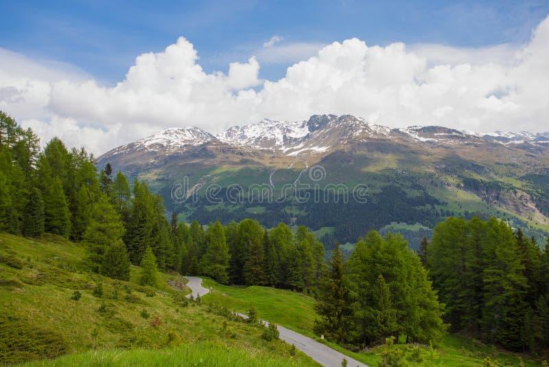 从Gavia通行证,里申阿尔卑斯山脉南部的一张高山通行证的看法,表示在省之间的行政边界  免版税库存照片