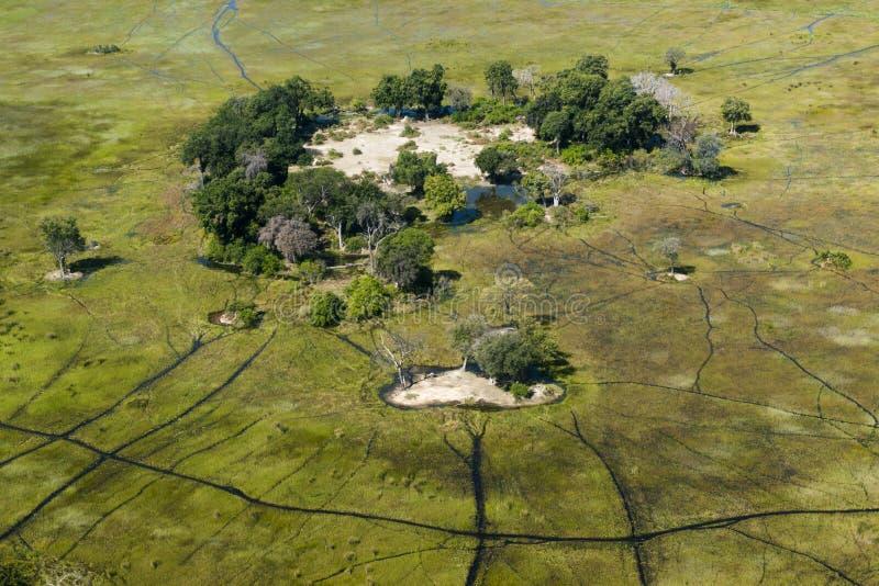从heli看到的Okavango Delta的小的海岛 库存图片