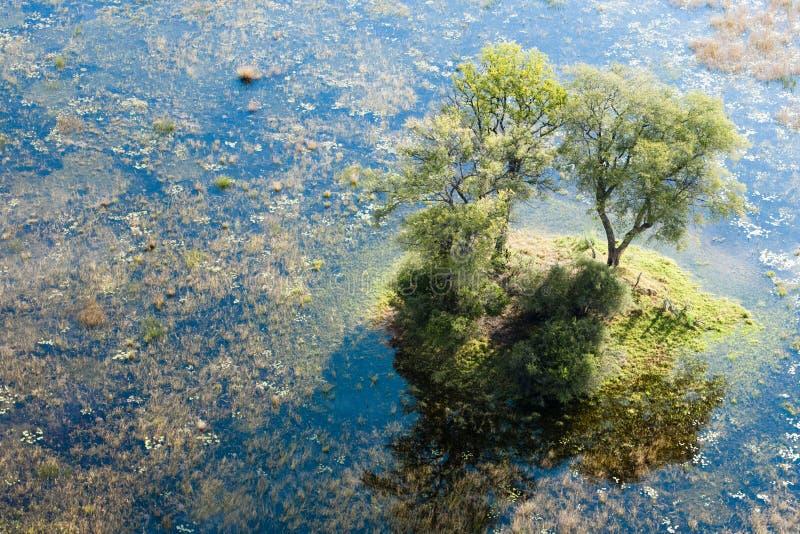 从heli看到的Okavango Delta的海岛 图库摄影