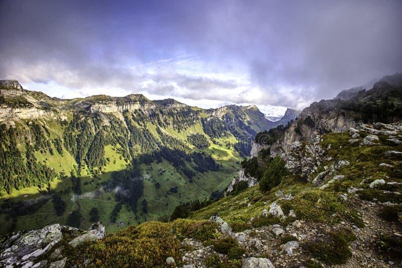 从Niederhorn在夏天,伯恩州,瑞士,墙纸的顶端Bernese阿尔卑斯 图库摄影