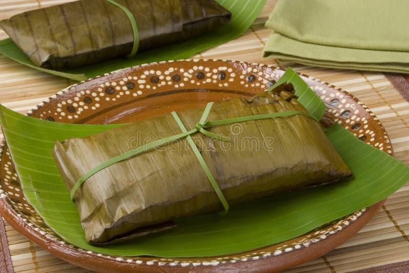从Oaxaca的玉米粽子 免版税库存照片