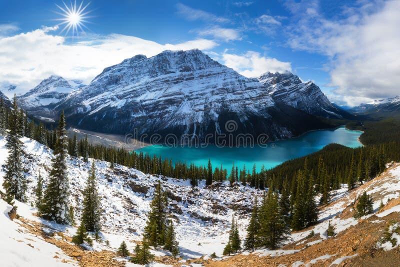 从Peyto湖弓山顶的看法在班夫国家公园,阿尔伯塔,加拿大 享受在沛托湖的看法 落矶山脉 免版税库存照片