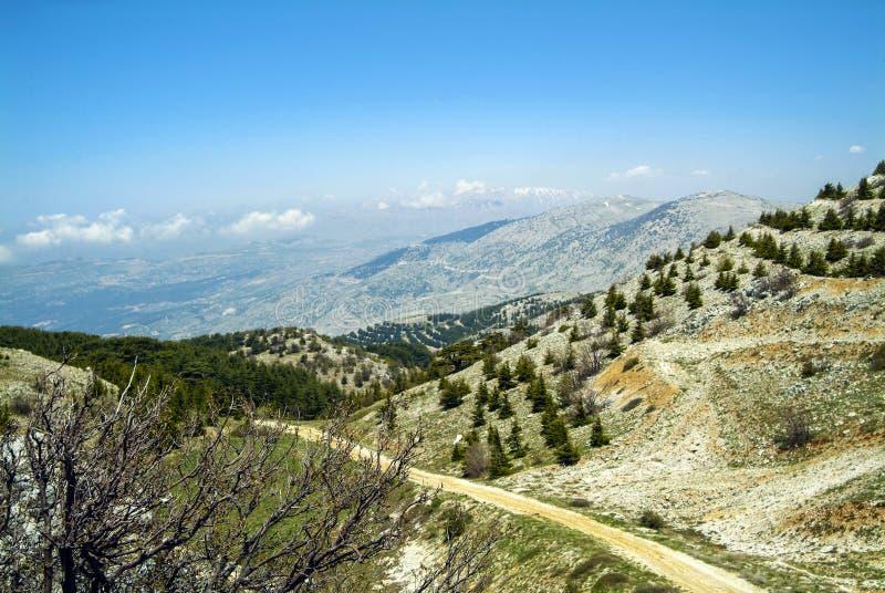 从Shouf生物圈储备山的山顶土坎,黎巴嫩的看法 免版税库存图片