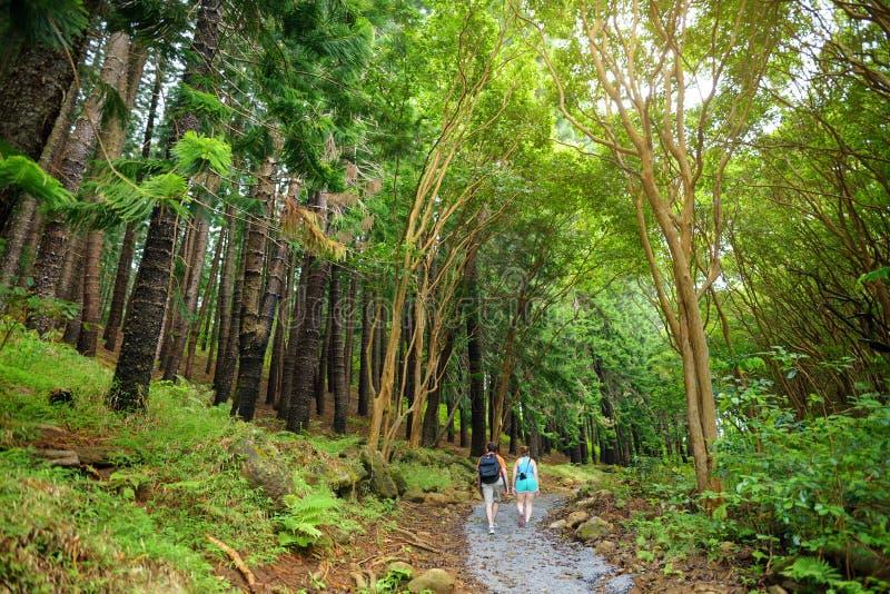 从Waihee里奇足迹看的惊人的风景视图,毛伊,夏威夷 库存图片