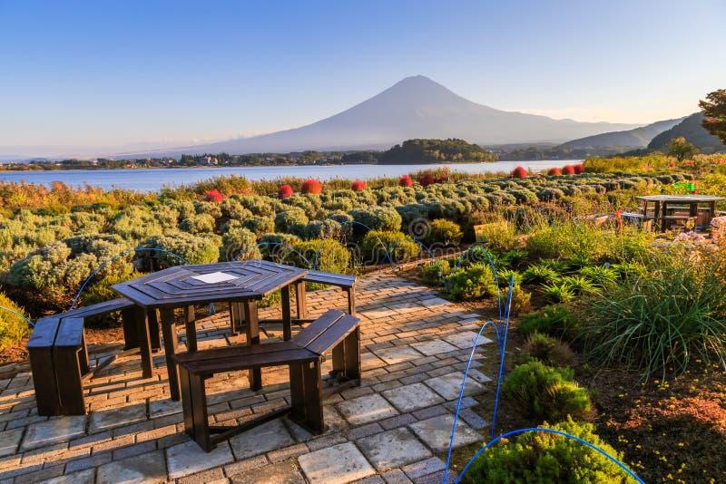 从Yagisaki公园的富士山视图Kawaguchi湖的, Kawaguchiko,日本 库存照片