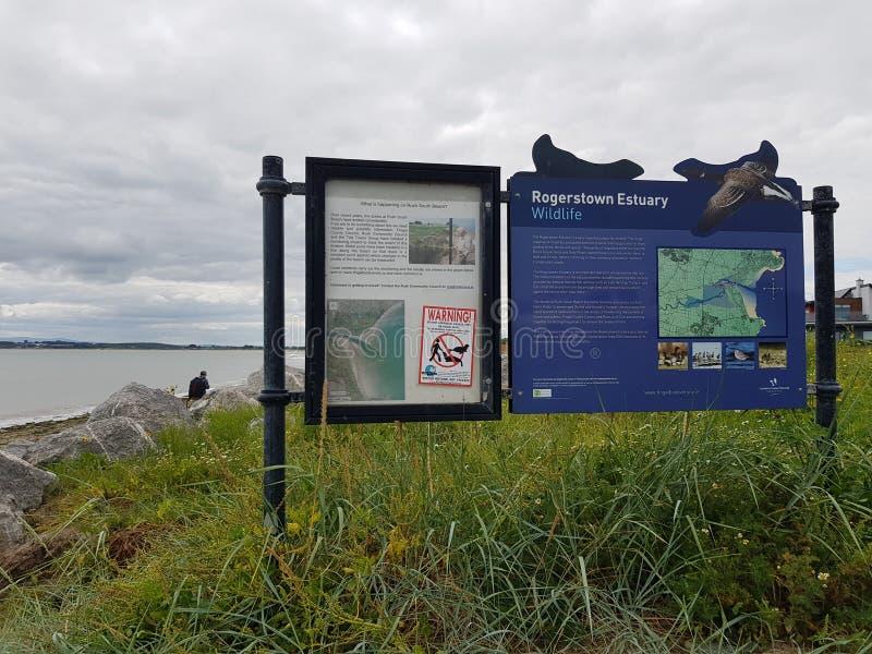 仓促海滩在爱尔兰 免版税库存图片