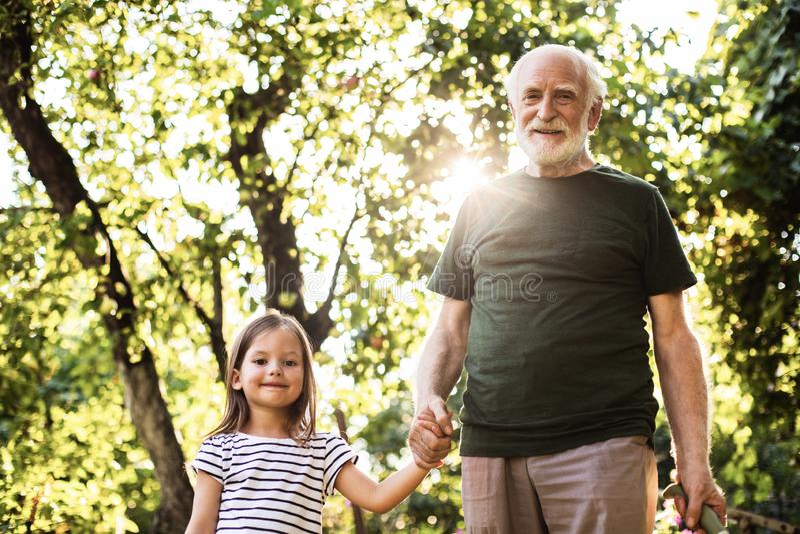 他的小孙的老年迈的微笑的人藏品手 免版税图库摄影