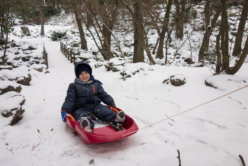 他的雪撬的愉快的小男孩在冬天雪 库存图片