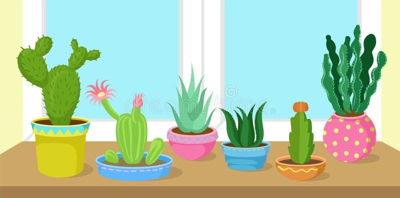 仙人掌和多汁植物在窗口传染媒介例证回家罐的植物 向量例证