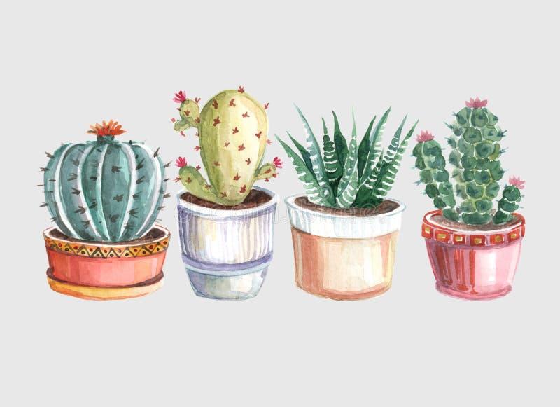仙人掌和多汁植物的水彩无缝的样式 水彩 免版税图库摄影