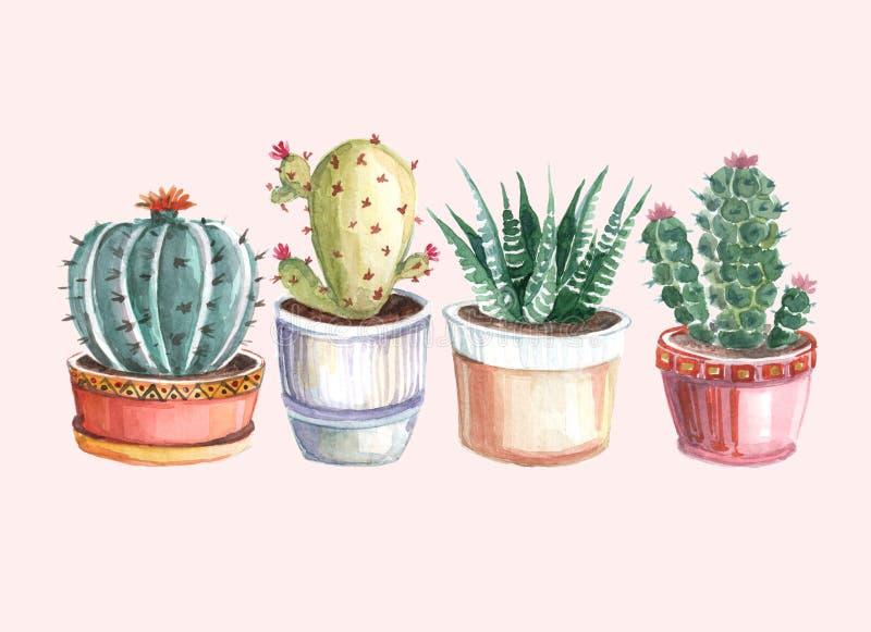 仙人掌和多汁植物的水彩无缝的样式 水彩 免版税库存图片