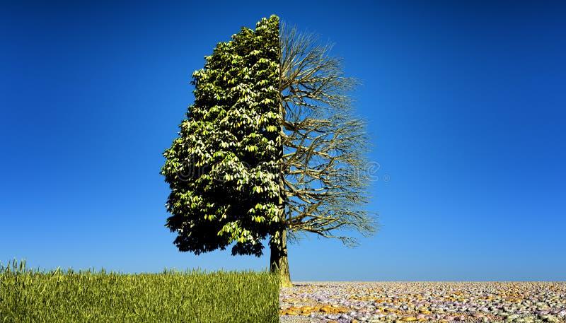 一半绿色一半光秃的树 皇族释放例证