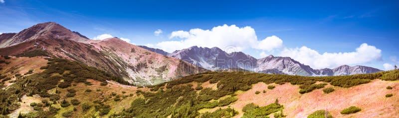 令人叹为观止的塔特拉山脉,秋色 — 萨拉廷和布雷斯托瓦峰 免版税库存图片