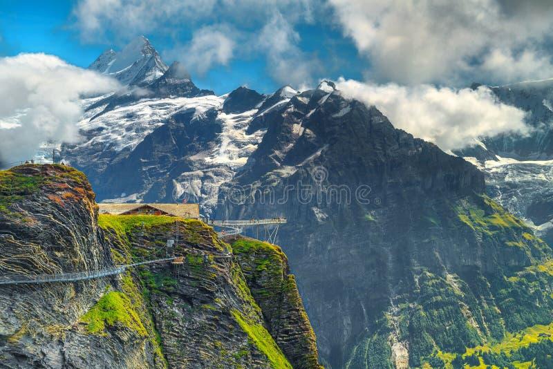 令人惊讶的全景和第一个山驻地,格林德瓦,瑞士,欧洲 免版税库存图片