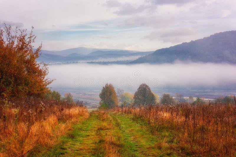 令人惊讶的自然、风景秋天风景与迷雾山脉,五颜六色的秋季草和树和天空蔚蓝与云彩 免版税库存图片