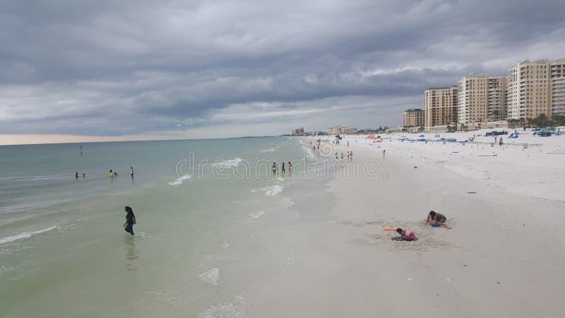 令人惊讶的自然和海滩在佛罗里达克利尔沃特 免版税图库摄影