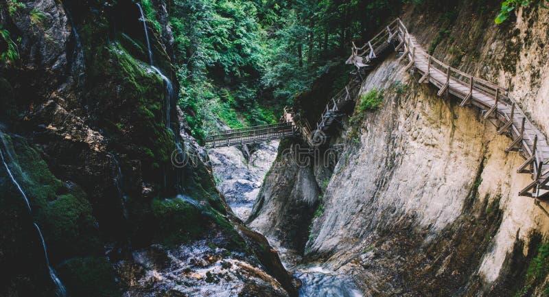 令人惊讶的落下的瀑布 库存图片