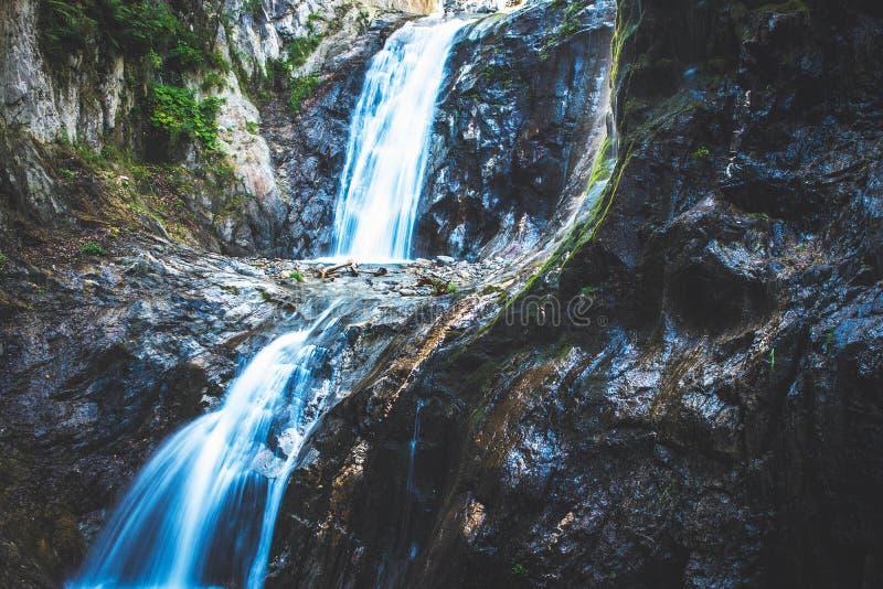令人惊讶的落下的瀑布 库存照片