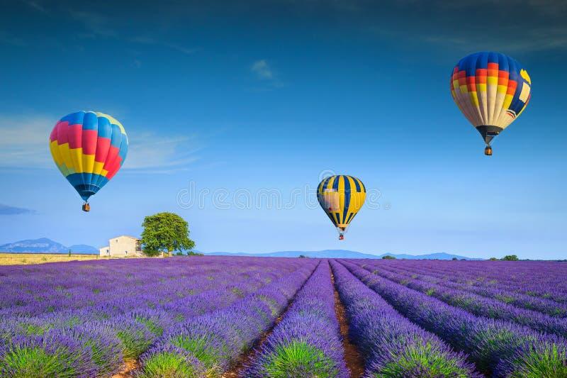 令人敬佩的紫罗兰色淡紫色领域和五颜六色的热空气气球,法国 库存照片
