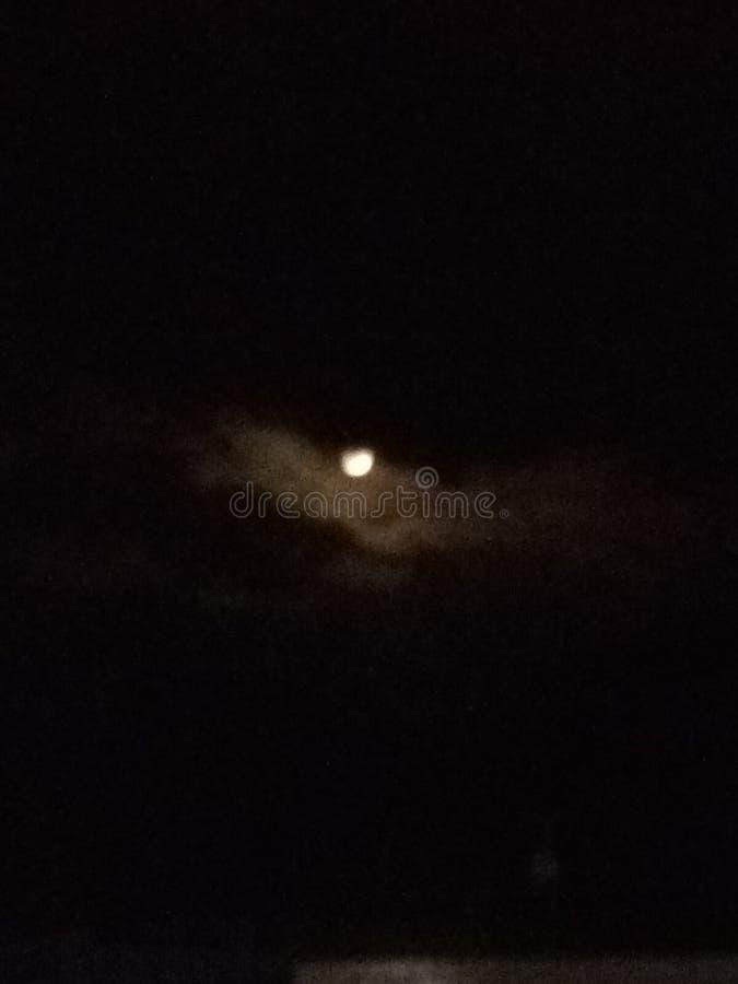 令人毛骨悚然的月光夜 免版税库存照片