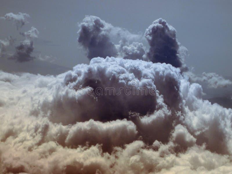 以一只野生动物的形式云彩 库存照片