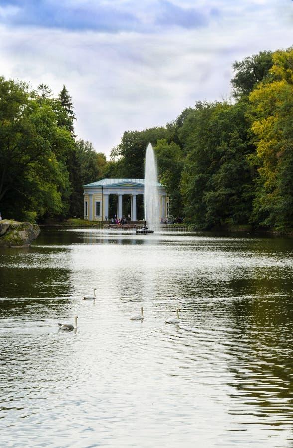 以一条蛇的形式喷泉在水中 免版税库存照片