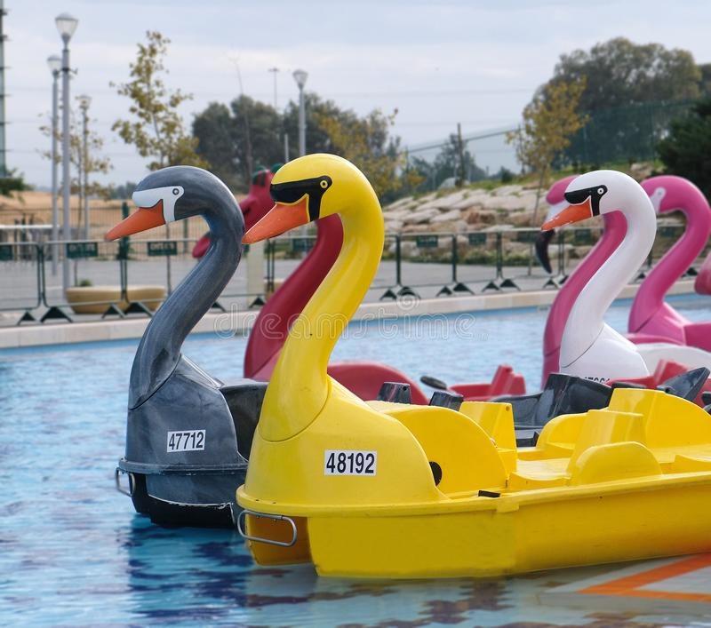 以五颜六色的塑料天鹅的形式小船在一个公园的水库在霍隆在以色列 库存照片