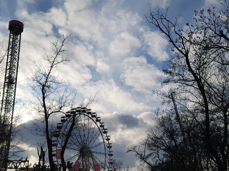 以冷的天空蔚蓝为背景的光秃的树枝 免版税库存图片