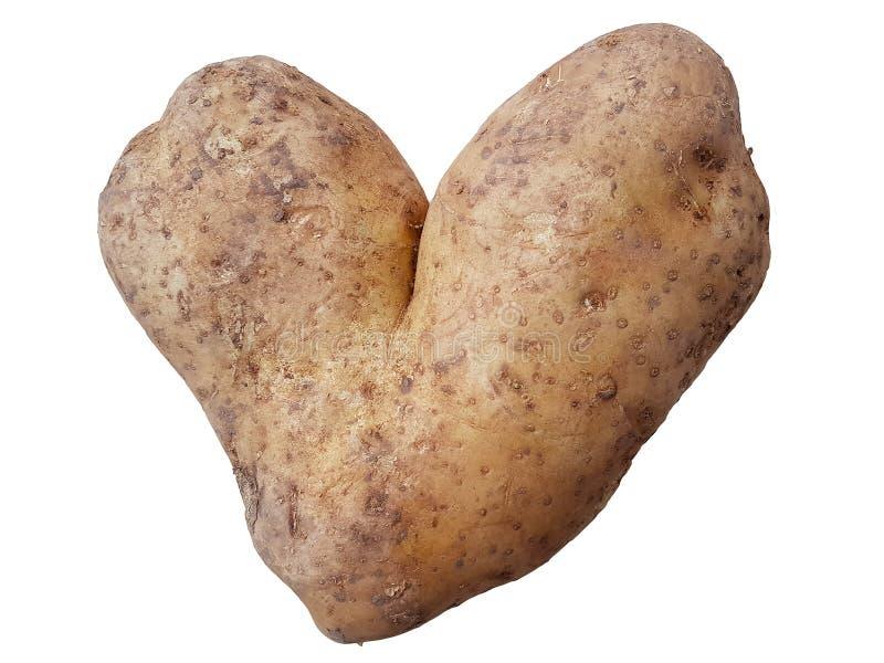 以在白色隔绝的心脏的形式Potatoe 一个滑稽的看法 免版税库存图片