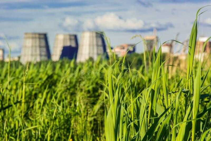 以工厂致冷机为背景的明亮和高绿草 免版税库存图片