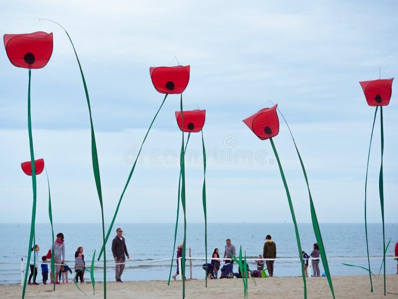 以巨型鸦片的形式装饰在的海滨 库存图片