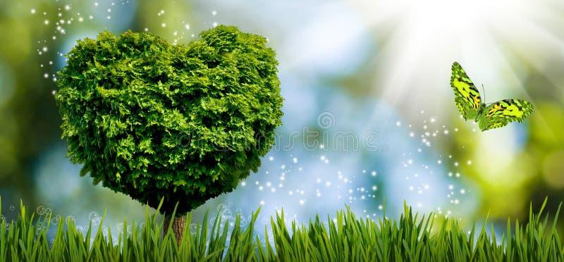 以心脏的形式在庭院特写镜头的树和蝴蝶 库存例证